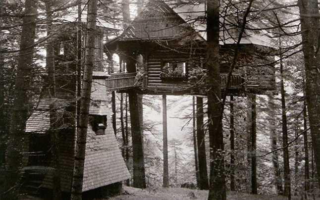 Căsuța din copaci a Reginei Maria – cea mai ciudată reședință de pe Domeniul Regal Sinaia